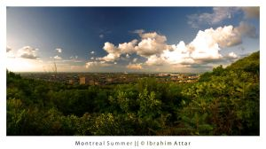 Montreal Summer by biroo87