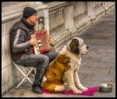 Man and his Dog by nicholls34