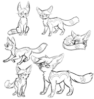Fennec Chrissy studies by CrispyCh0colate