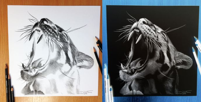 Clouded Leopard Inverted Pencil Drawing by AtomiccircuS