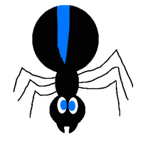 My first try of drawing a Spider by jared33