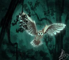 the owl --speedpaint-- by juanitawolf