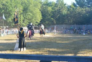King Richard's Fair, Jousting the Enemy 2 by Miss-Tbones