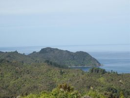 More from Whitianga 2 by OWTC-Stock