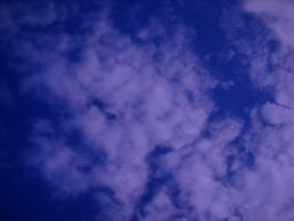 Look up by Epiphone14