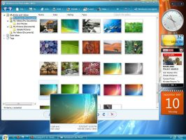 Windows Live Photo Gallery by Picassa243