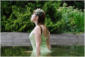 Lady Of The Lake VI by Eirian-stock