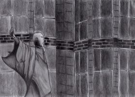 Lord Voldemort by silent9213hill