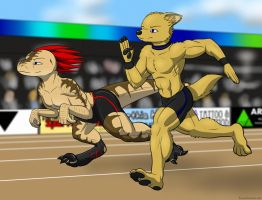 Friendly Race by SonOfNothing