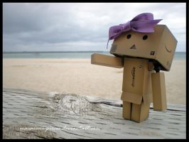 Danbo by the Beach by Macaroni-Pieces