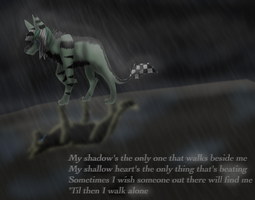 My shadow... by Hawkheart1