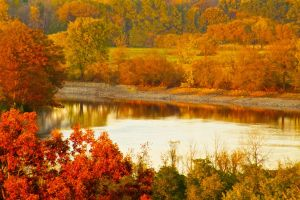 Autumn by the river by 0124nathan