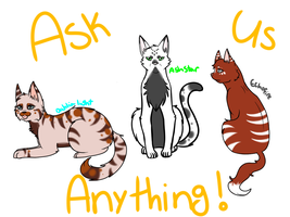 Ask The Cat! by Tess-Is-Epic