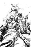 TMNT cover 2 by dan-duncan