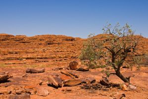 Kings Canyon Wasteland by duncan-blues