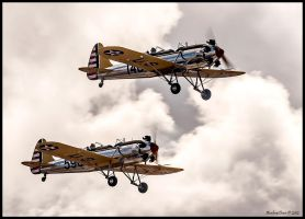 Ryan PT-22 Recruit's N53271 and N48777 by AirshowDave