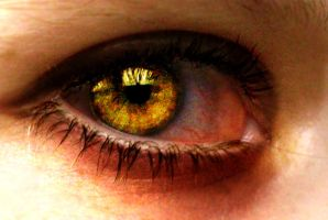 Eye - Gold by FreeToFly3733