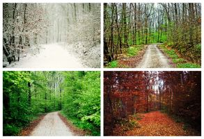 the seasons by Rona-Keller