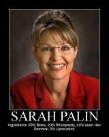 The ingredients of Sarah Palin by Birther
