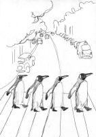 abbey road penguins by hermitsrme