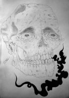 Just a skull by SadnessGuy