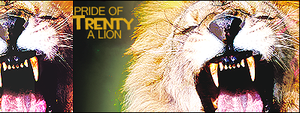 Lions Pride Signature - 1 by Trent911