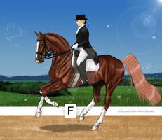 Stiletto Dressage by wideturn