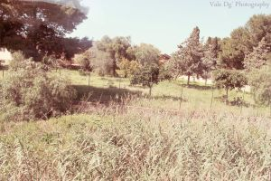 Nature is my life by ValerieSun