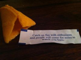 The best advice given by a cookie by cassandra667