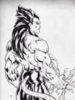 Vegeta SSJ 4 by Kid-Destructo