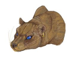 Fossa of Doooom by aureath