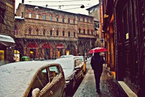 it's snowing in bologna by tolgagonulluleroglu