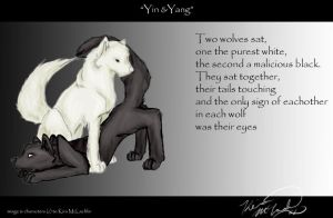 Yin and Yang by Sun-wing