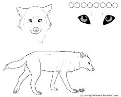 Free Wolf Ref Sheet by Lurking-Phantom