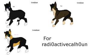 Kittens for radi0activecalh0un by N1GHTWOLFXD