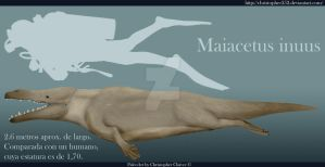 Maiacetus inuus by Christopher252