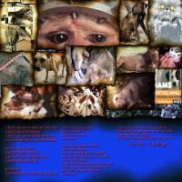 Stop Animal Testing and Abuse by JesterDev