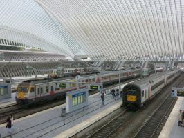 Liege-Guillemins station 130914 by kanyiko