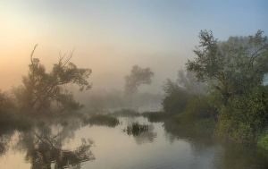 Misty river 2 by jeremi12