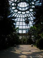 Royal Greenhouse VIII by Anne-Cathy