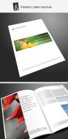 Corporate brochure 11 by demorfoza