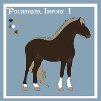 Polharder Import 1 by blanjojo