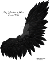 Fluffed Wings 2 - Black by Thy-Darkest-Hour