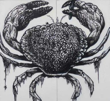 Crab by MAUscabola