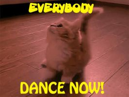 EVERYBODY DANCE NOW! by Scratts
