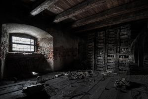 Iron Ration by AbandonedZone