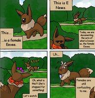 The Eevees 30: Females by NoaQep