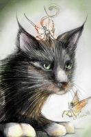 fairy cat by kika1983
