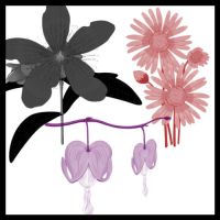 20 vector flowers brush set I by noema-13
