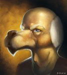 dogman by Hysteriall
